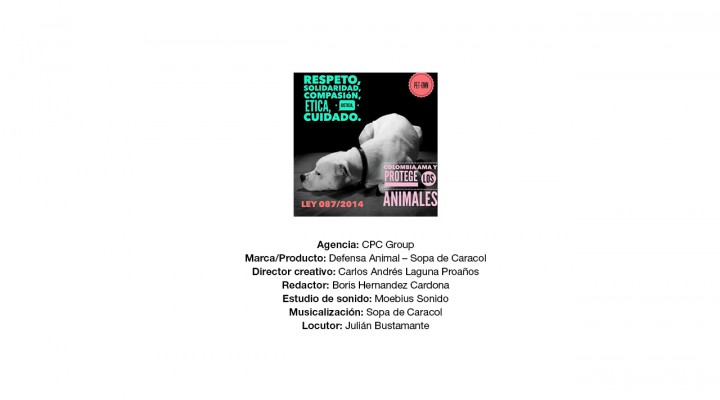 Sopa de Caracol – Juntosporlosanimales.com