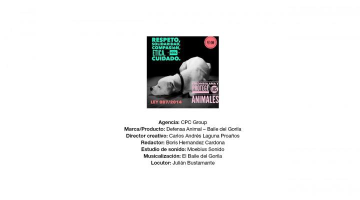 El Baile del gorila – Juntosporlosanimales.com